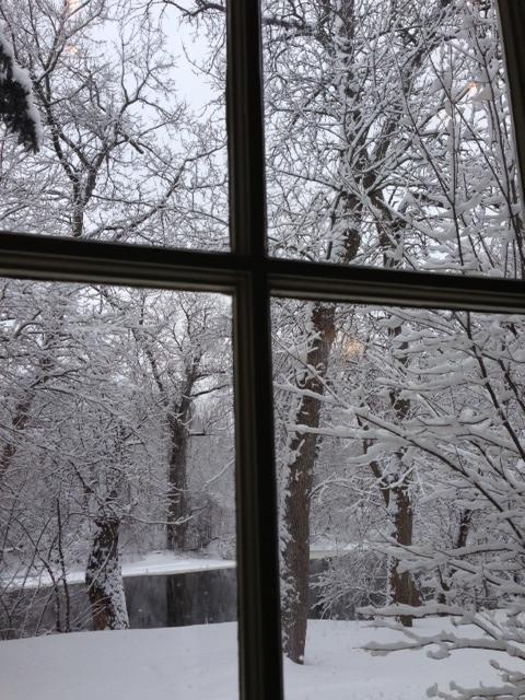 Snow Pane